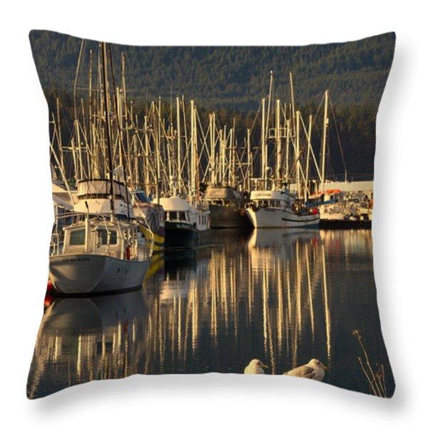 Deep Bay Throw Pillow by Randy Hall