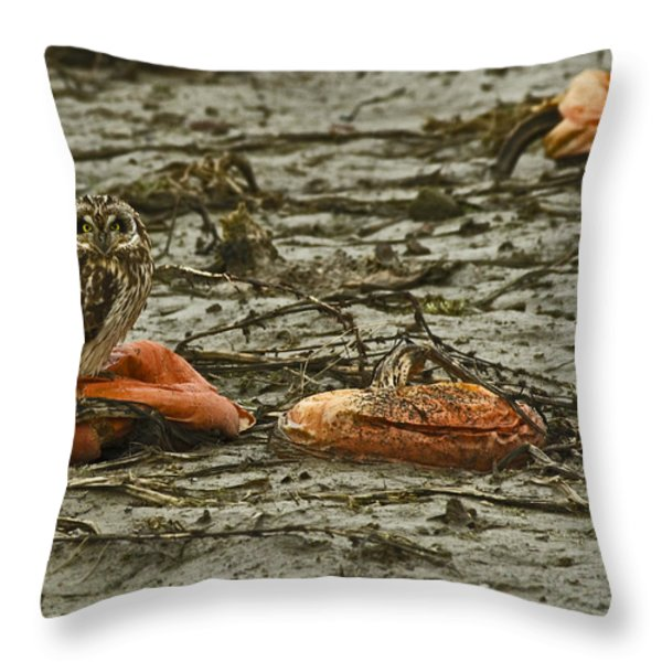 Deflated  Throw Pillow by Rob Mclean