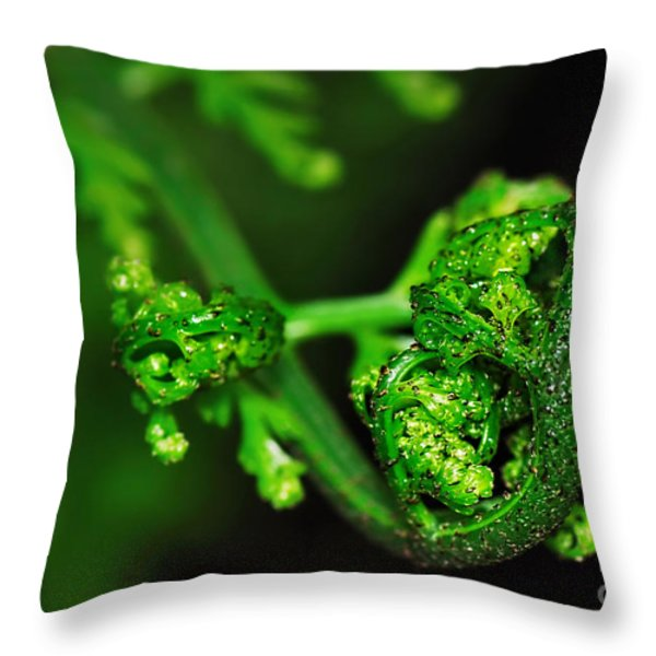 Delicate Fern Unfolding Throw Pillow by Kaye Menner