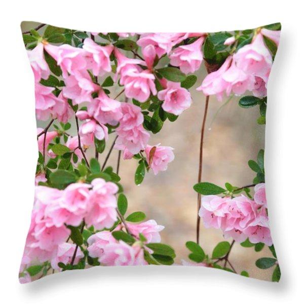 Delicate Pink Azaleas Throw Pillow by Carol Groenen