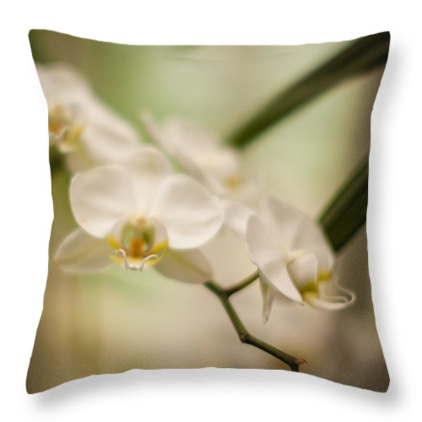 Delicate Romance Lace Throw Pillow by Mike Reid
