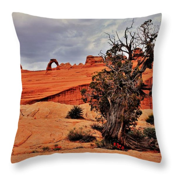 Delicate Strength Throw Pillow by Benjamin Yeager