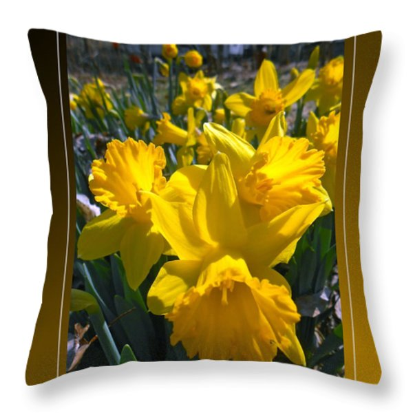 Delightful Daffodils Throw Pillow by Patricia Keller