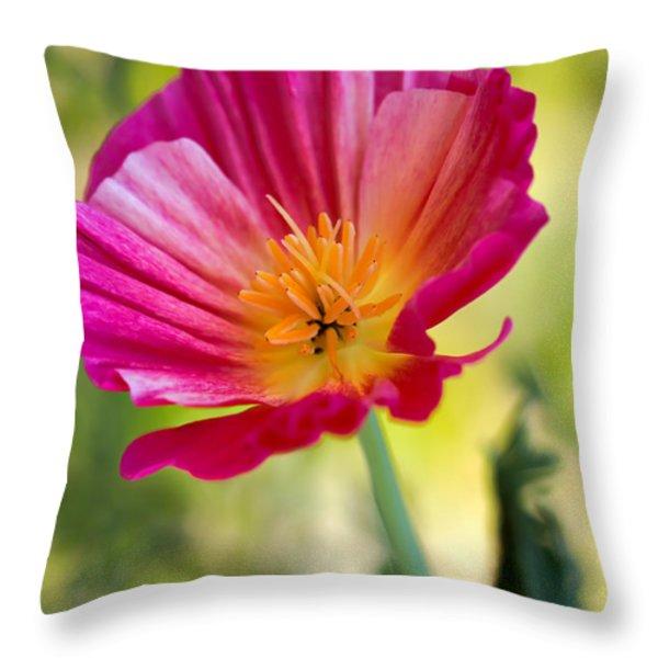 Delightful Throw Pillow by Heidi Smith