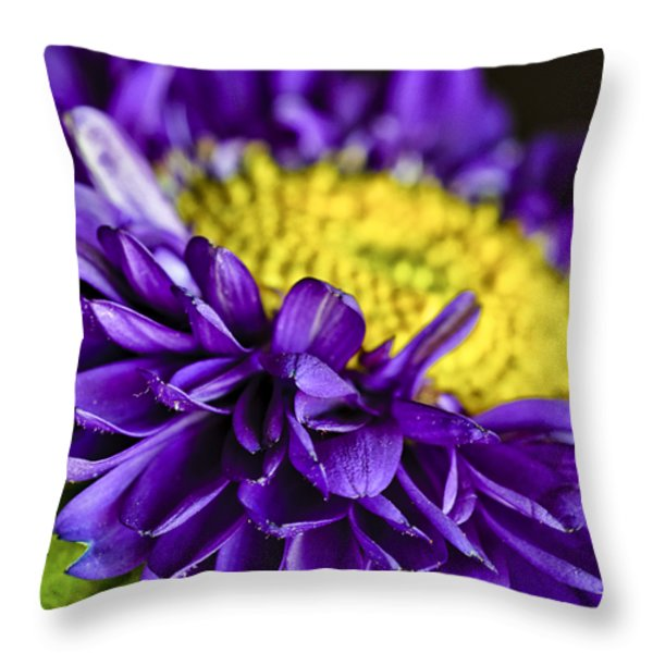 Delights the Eye Throw Pillow by Christi Kraft