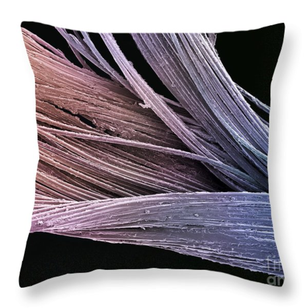 Dental Floss SEM Throw Pillow by SPL