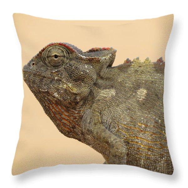 Desert Chameleon Throw Pillow by Ramona Johnston