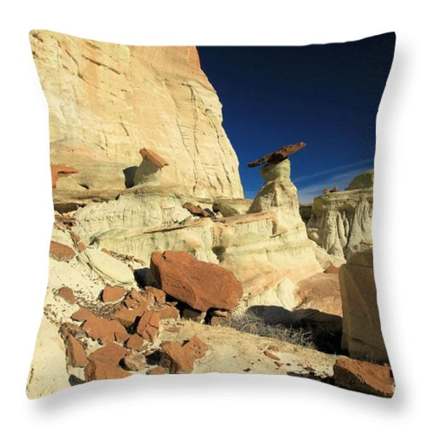 Desert Decorations Throw Pillow by Adam Jewell