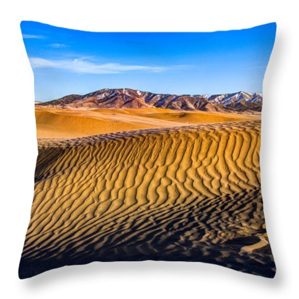 Desert Lines Throw Pillow by Chad Dutson
