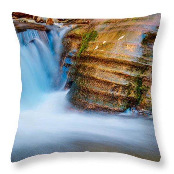 Desert Oasis Throw Pillow by Chad Dutson