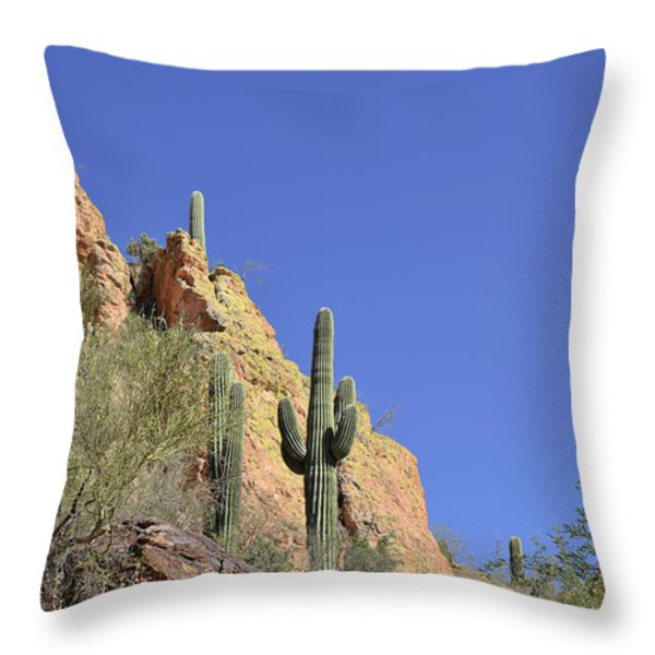 Desert Plants of The Superstitions Throw Pillow by Christine Till