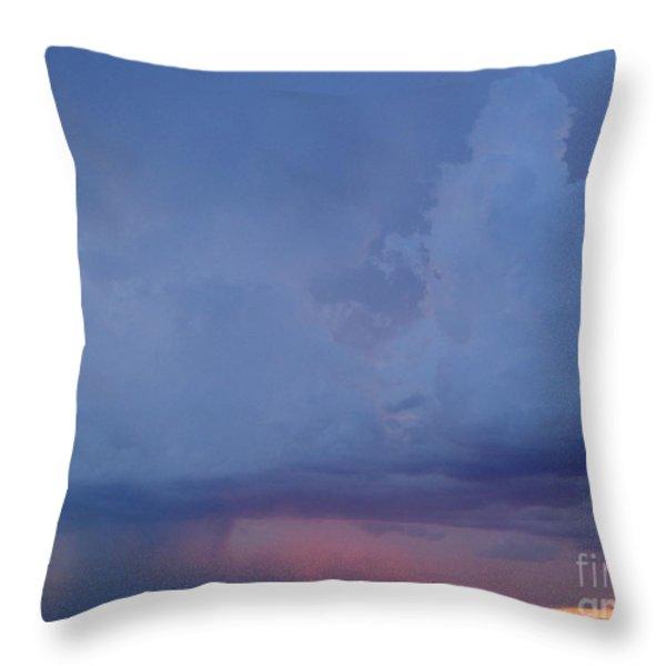 Desert Rainstorm 3 Throw Pillow by Kerri Mortenson