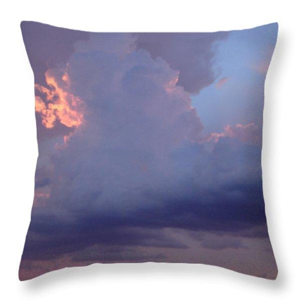 Desert Rainstorm 5 Throw Pillow by Kerri Mortenson