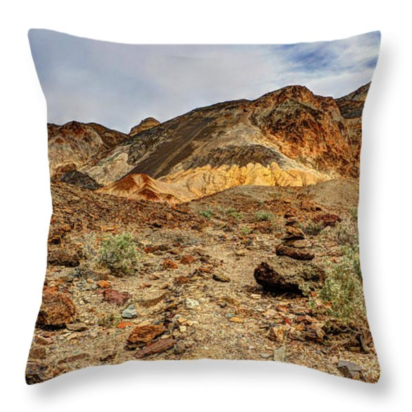 Desert Zen Throw Pillow by Heidi Smith