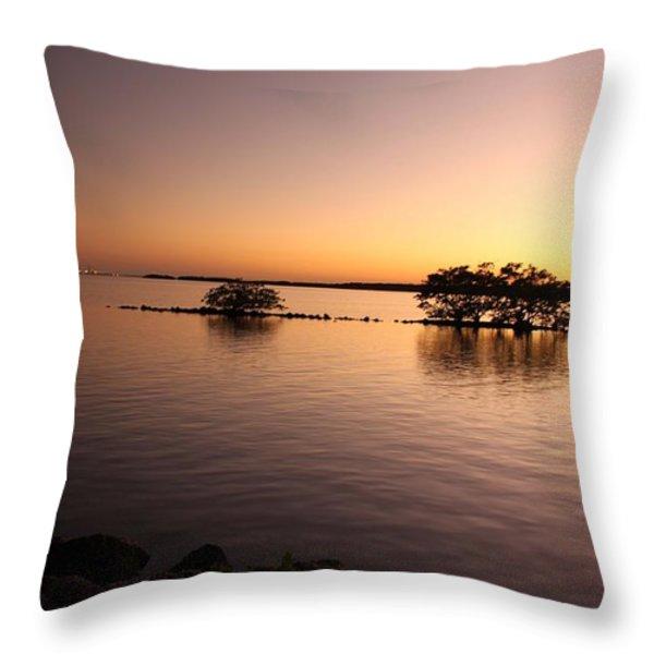 Deserted Island Throw Pillow by AR Annahita