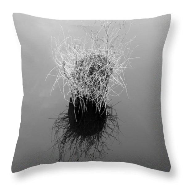 Deserted Island Throw Pillow by Luke Moore