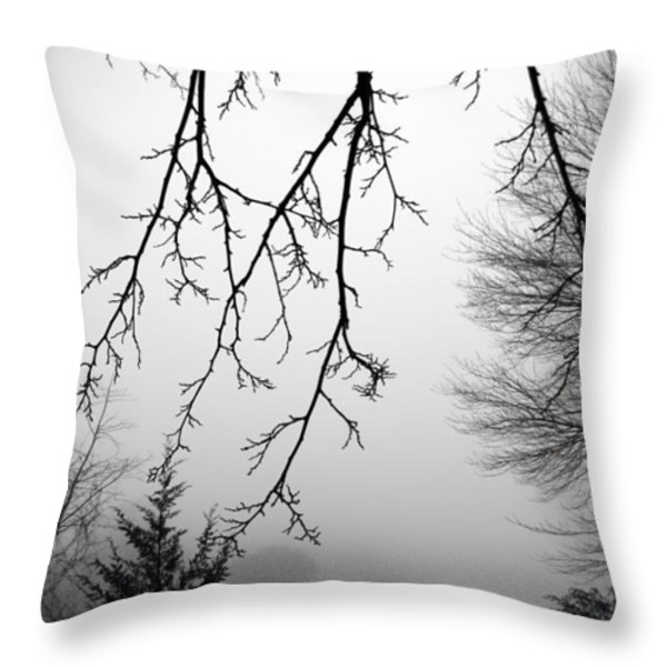 Design By Nature Throw Pillow by Brian Wallace
