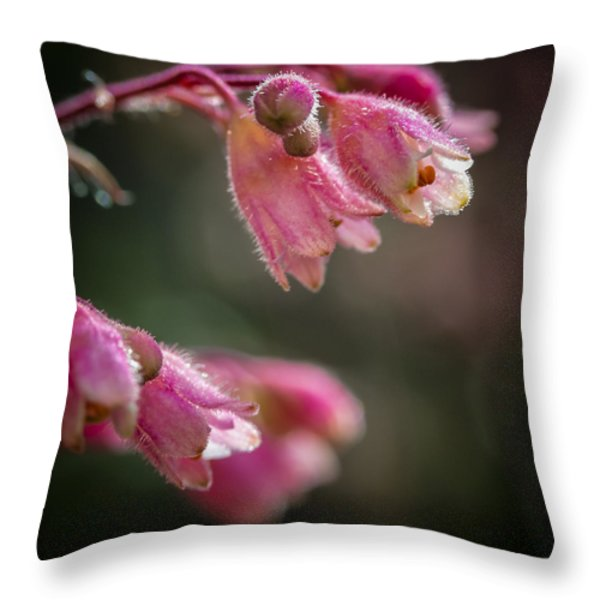 Details Throw Pillow by Caitlyn  Grasso