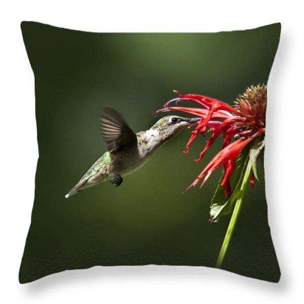 Determination Throw Pillow by Christina Rollo