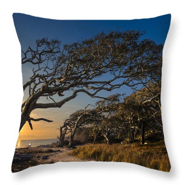 Determination Throw Pillow by Debra and Dave Vanderlaan