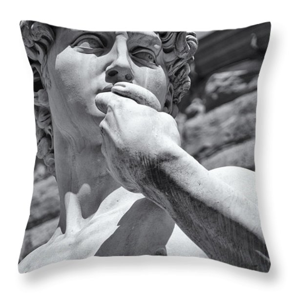 Determination Throw Pillow by Melany Sarafis