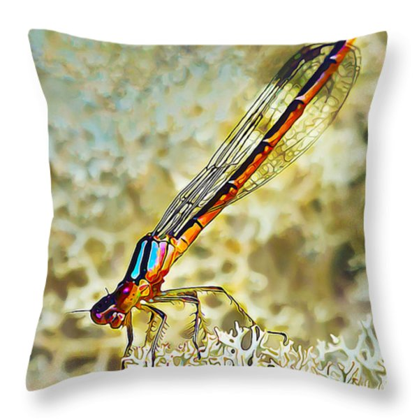 Devils's Head Damselfly Throw Pillow by Bill Caldwell -        ABeautifulSky Photography