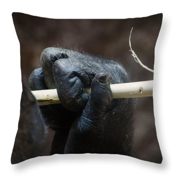 Dexterity Throw Pillow by Rebecca Sherman