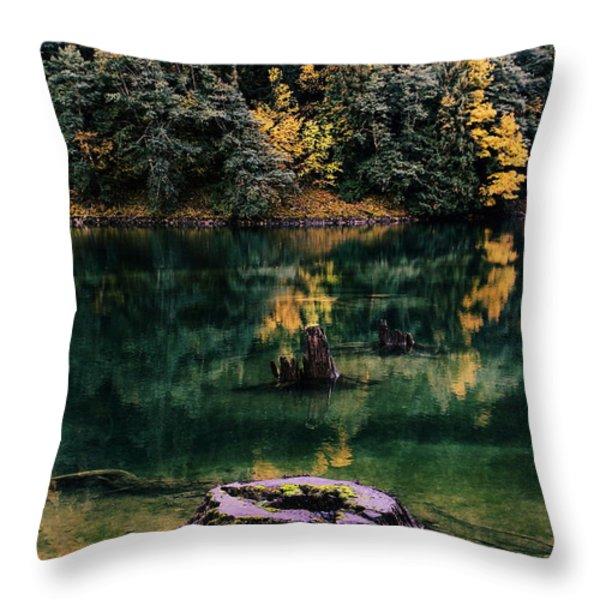 Diablo Lake Tree Stump Throw Pillow by Benjamin Yeager