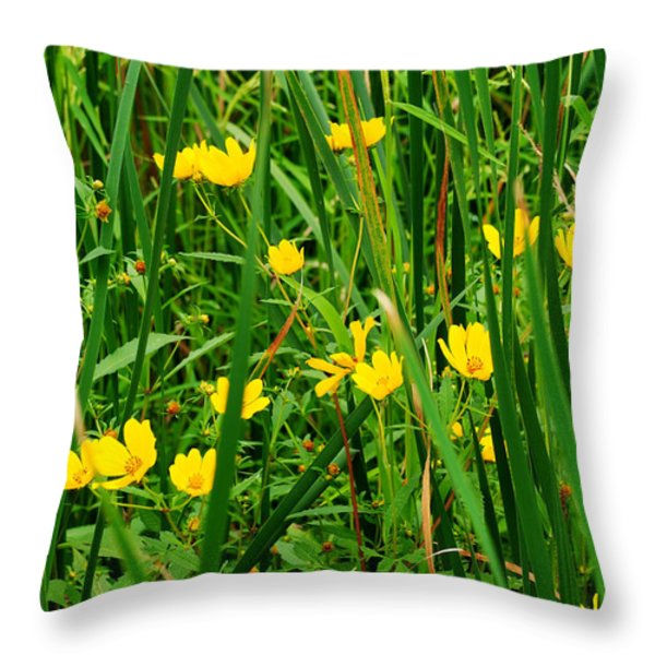 Diamonds in the Rough Throw Pillow by Frozen in Time Fine Art Photography