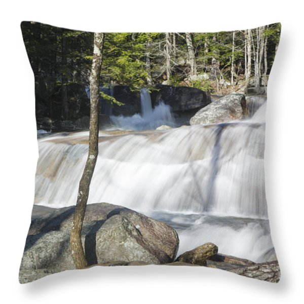 Dianas Bath - North Conway New Hampshire USA Throw Pillow by Erin Paul Donovan