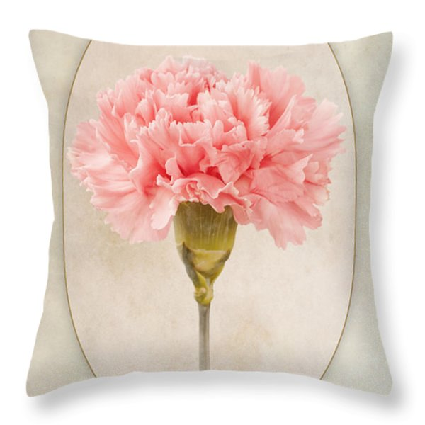 Dianthus Caryophyllus Carnation Throw Pillow by John Edwards