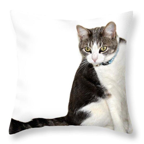 Did I Hear a Mouse Throw Pillow by Susan Leggett