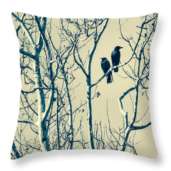 Differing Views Throw Pillow by Caitlyn  Grasso