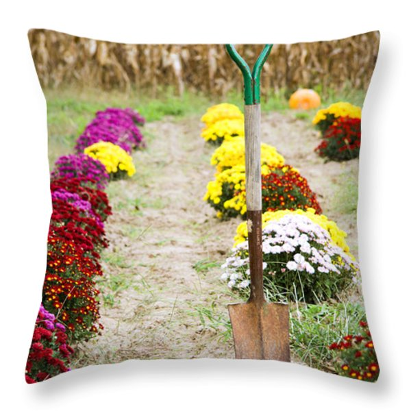 Dig Your Own Throw Pillow by Alexey Stiop