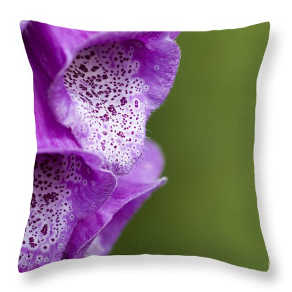 Digitalis Abstract Throw Pillow by Anne Gilbert