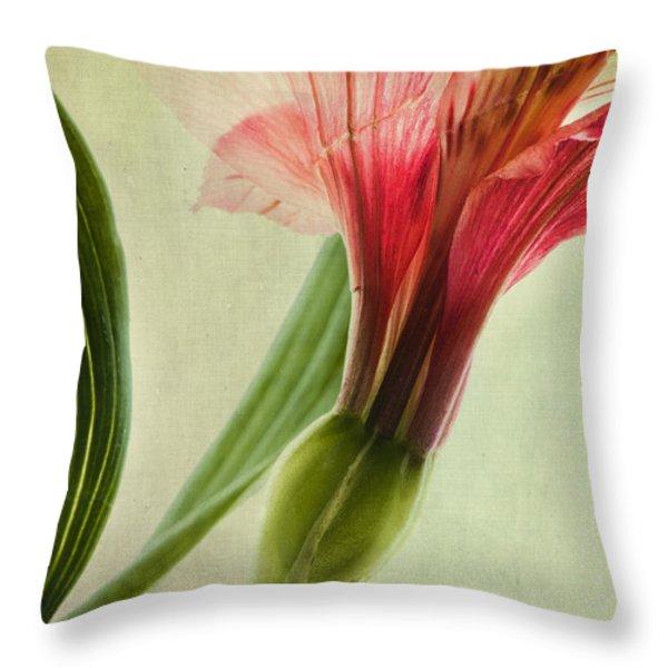 dim colours Throw Pillow by Priska Wettstein