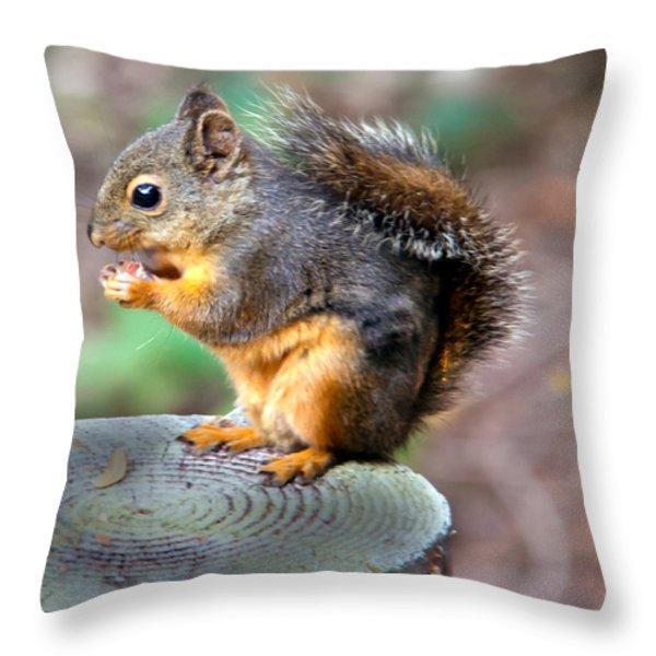 Dinner Time Throw Pillow by Robert Bales