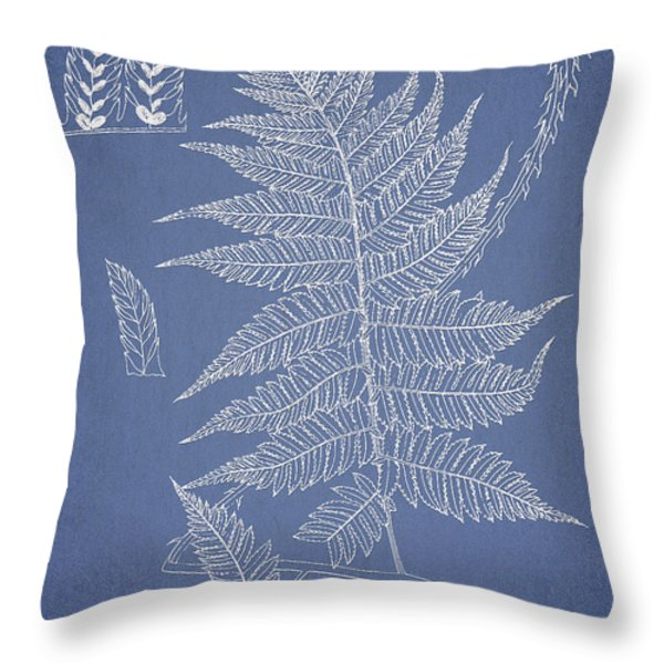 Diplazium jerdoni Throw Pillow by Aged Pixel