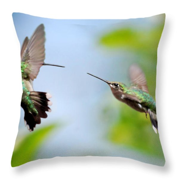 Direct Confrontation Throw Pillow by Christina Rollo