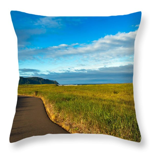 Discovery Trail Throw Pillow by Robert Bales
