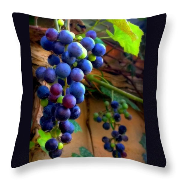 DIVINE PERFECTION Throw Pillow by KAREN WILES