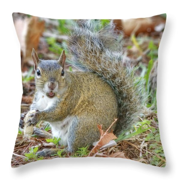 Do I Have Any On My Face Throw Pillow by Deborah Benoit