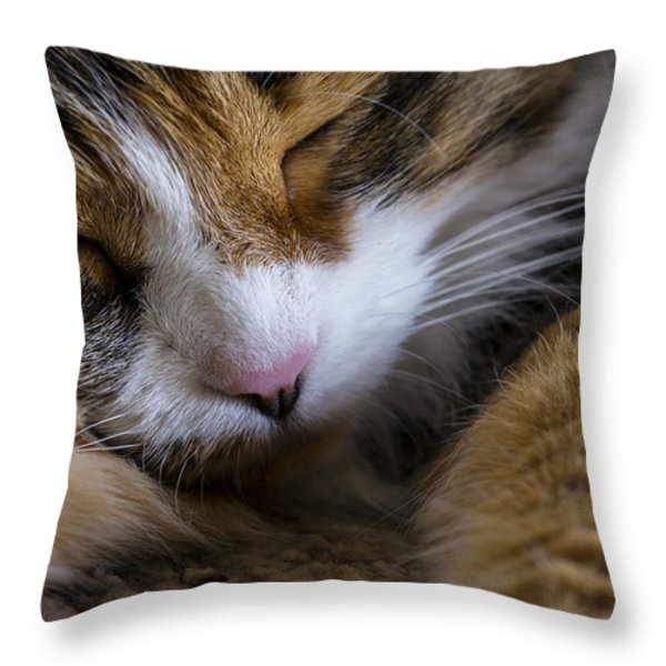 Do Not Disturb Throw Pillow by Andrew Pacheco