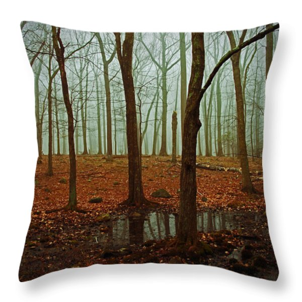 Do We Dare Go Into The Woods Throw Pillow by Karol  Livote