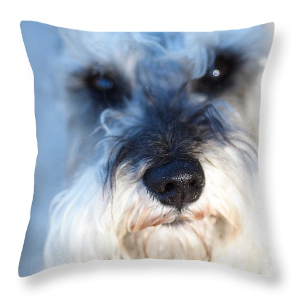 Dog 2 Throw Pillow by Wingsdomain Art and Photography
