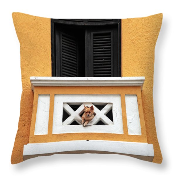 Dog Throw Pillow by John Rizzuto