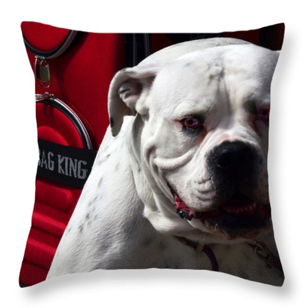 Dog Power Throw Pillow by Camille Lopez