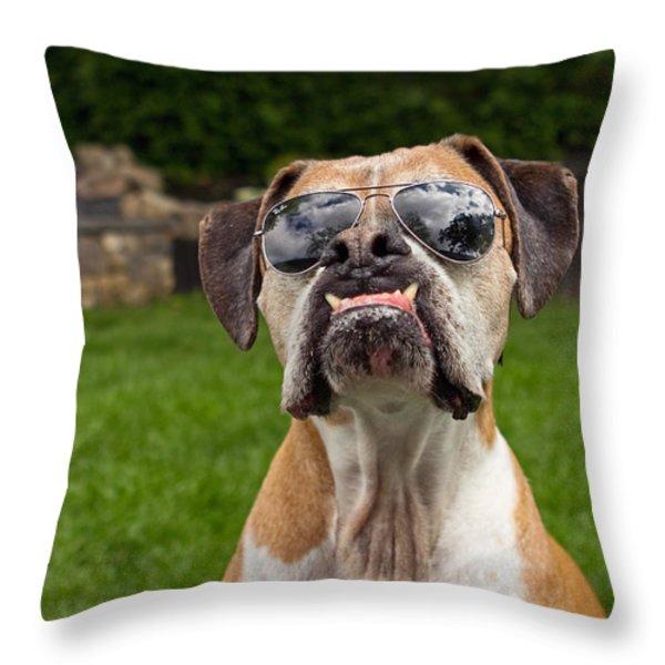 Dog Wearing Sunglass Throw Pillow by Stephanie McDowell
