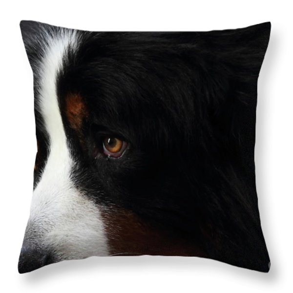 Dog Throw Pillow by Wingsdomain Art and Photography