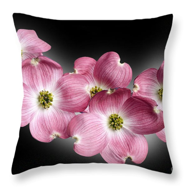 Dogwood Blossoms Throw Pillow by Tony Cordoza
